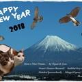 写真: 2018 あけおめにゃ~(*^^*)