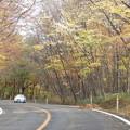 写真: 蔵王の紅葉