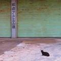 松島アルミ工業
