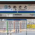 Photos: 梅郷駅 Umesato Sta.