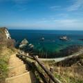 写真: 島武意海岸