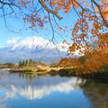 写真: 終秋の田貫湖。