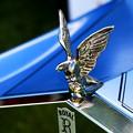 Photos: Emblem