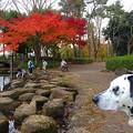 Photos: お散歩中…