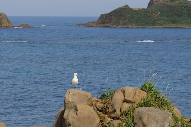 スコトン岬@2012北海道旅行2日目