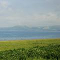 宗谷丘陵@2012北海道旅行最終日