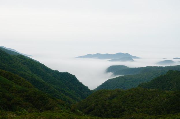 羅臼町の雲海@2013北海道旅行最終日