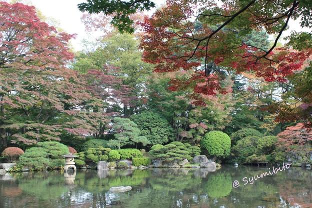 もみじ公園 (娘 撮影) (2)