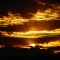 写真: 初日の出