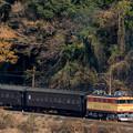 Photos: 大井川鐵道 下泉~田野口