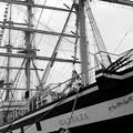 神戸開港150周年記念
