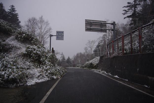 安房峠は雪だった