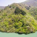 新緑がまぶしい庄川