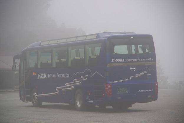 1台しかない、当りのバス E-SORA号