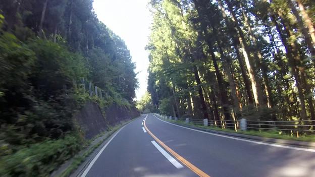 写真: 志賀高原