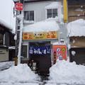 写真: 雪のスパロー