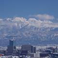 写真: 呉羽山より立山