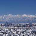 写真: 呉羽山より立山連峰