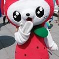 Photos: えび~にゃ