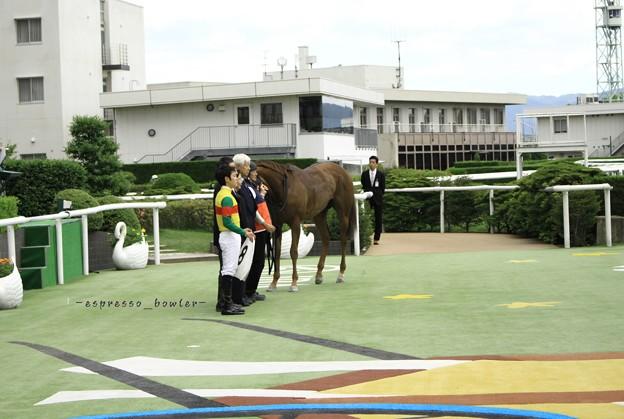 ★2017.05.27京都競馬場2R菱田裕二騎手&セルリアンアラシ
