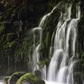写真: 鳥海山麓 元滝伏流水