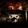 Photos: 永源寺19s