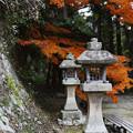 Photos: 油山寺11s