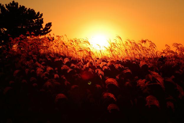 写真: 『秋の大海原。。。』