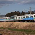 Photos: 117系カキS9編成 快速富士山トレイン117号静岡行き