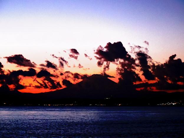 写真: 明けましておめでとうございます。