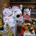 Photos: 招き猫2