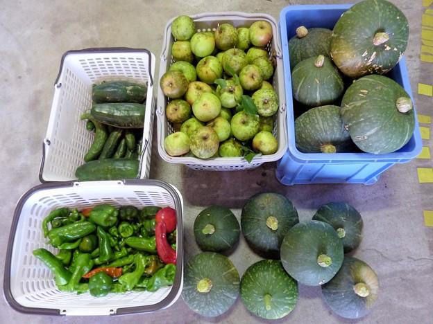 写真: 8.11の収穫物