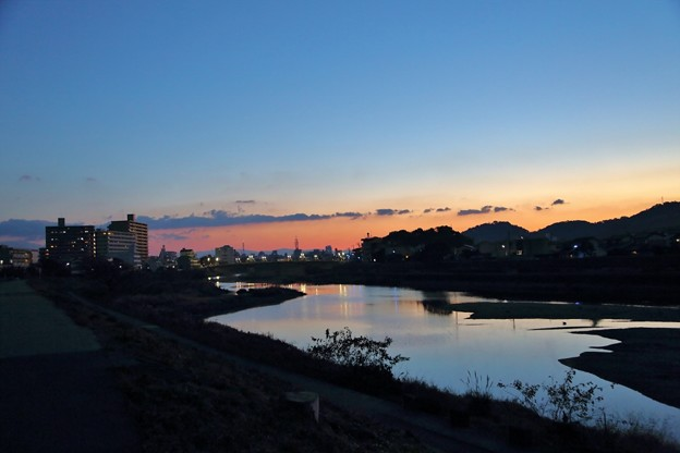 Photos: 鏡川の朝.4