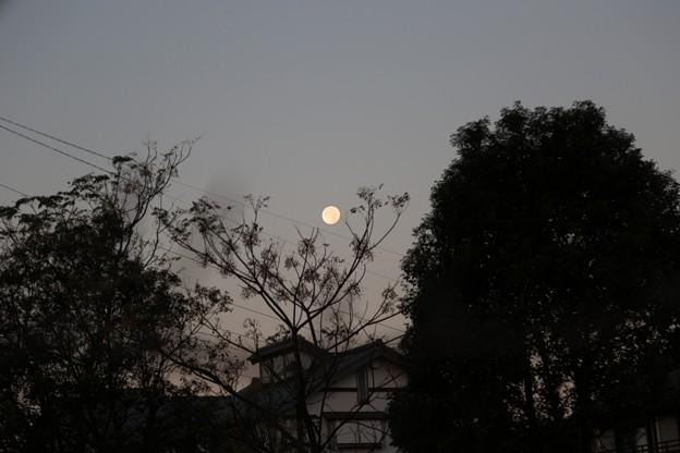 宵闇の月.2