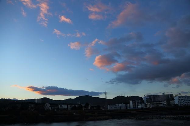 Photos: 鏡川の朝.2