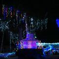 Photos: 光りの祭典5-2