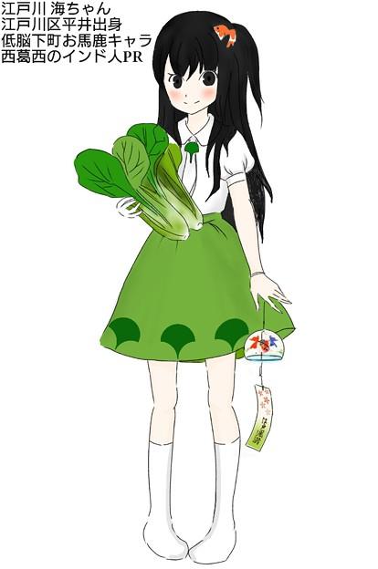 江戸川海ちゃん