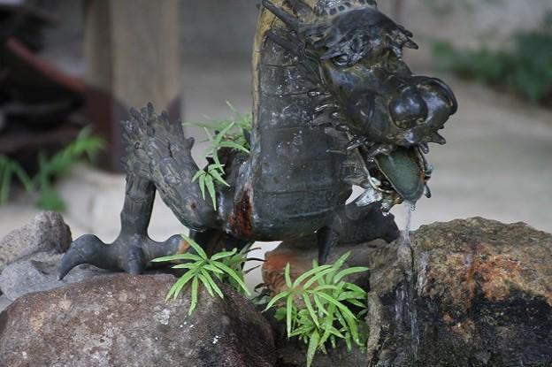 「沙羅の寺」應聖寺(3)