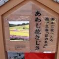 あわじ花さじき(1)