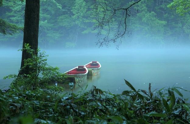 Photos: 雨の明神池 2