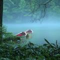 写真: 雨の明神池 2