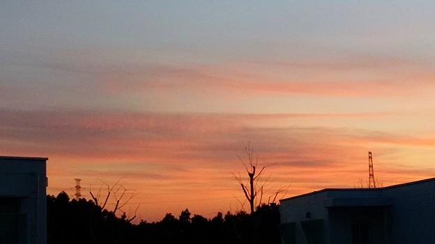 写真: 夕焼け空が真っ赤っか~♪