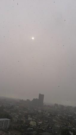 午後は雪。お日様も隠れてしまうぐらいでした。