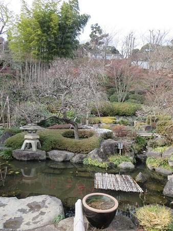 長谷寺 鎌倉 お庭よりきれいでした。でも霜柱もりっぱなものがありました。