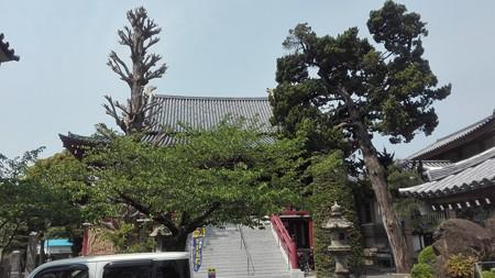 なんとなく奈良の東大寺を思わせる長安寺@三浦薬師