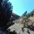 写真: 山伏峠から紅葉をみる