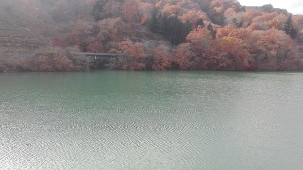 写真: 満々と水のある宮ヶ瀬湖