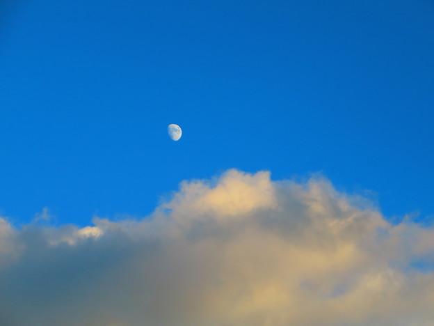 今日見た月