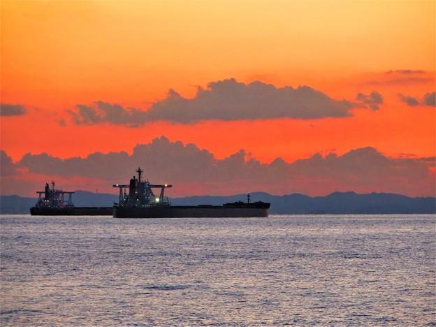写真: 今日観た風景 東京湾 タンカー