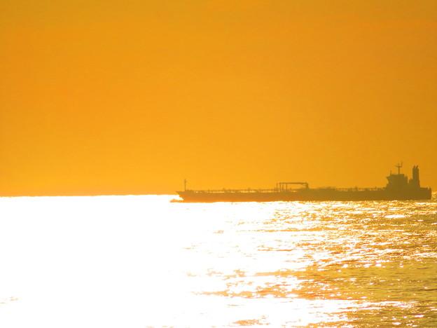 Photos: 黄金色